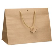 Box of 10 brown shopping bags with cord handles 29 x 39 x 18 cm