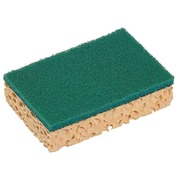 Vegetal scraping sponge Spontex - pack of 10