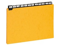 Game of 25 guide cards 210 x 297 mm Exacompta yellow
