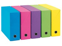 Standard cardboard Adine filing box with 12 cm back - assorted colors